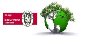 Limcamar obtiene la certificación ISO-50001, reafirmando su compromiso con la mejora de su desempeño energético
